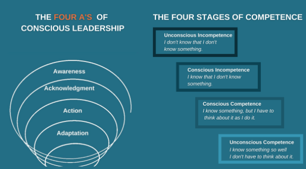 The Four Stages of Competency & ORCA's Four A's of Conscious Leadership